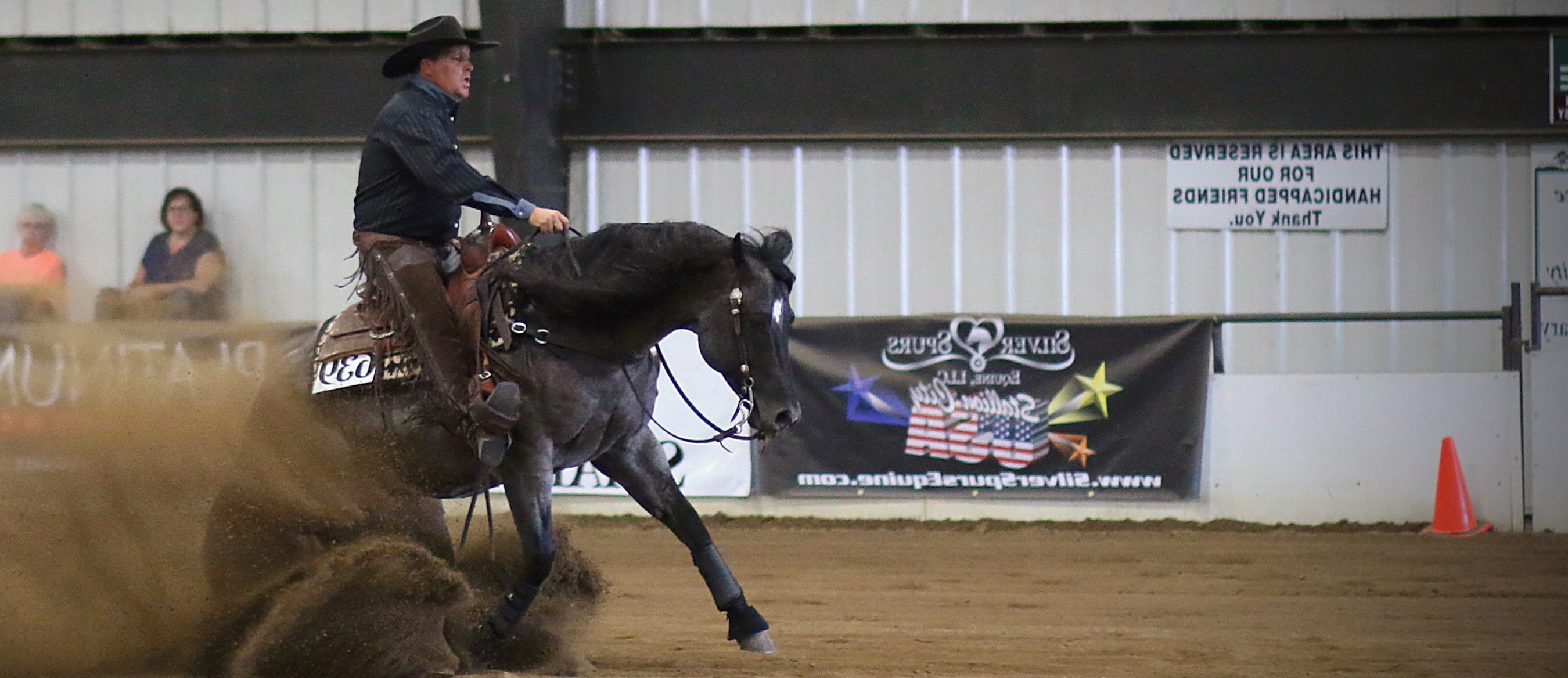 BTPH Trained Horse Show